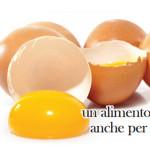 uovo alimento sano